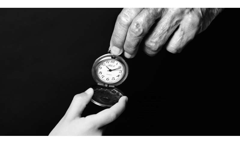 Link between biological clock and aging revealed