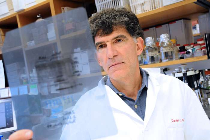 Linking human genome sequences to health data will change clinical medicine, says expert