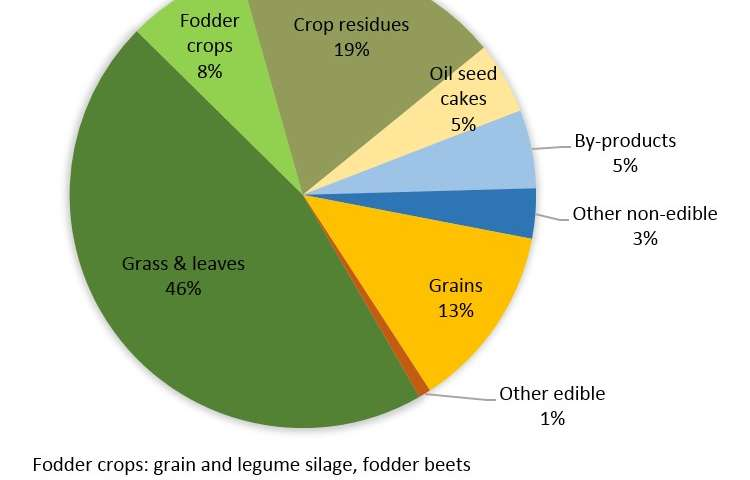 Livestock production, a much smaller challenge to global food security than often reported