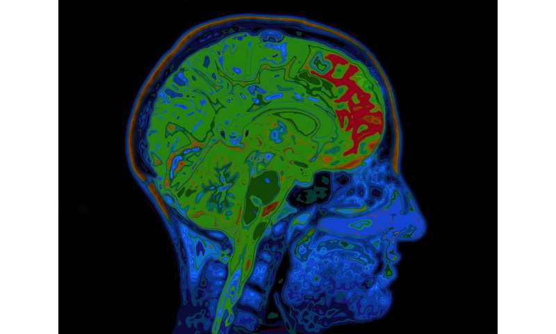 Mapping Brain Connectivity with MRI May Predict Outcomes for Cardiac Arrest Survivors, Study Finds