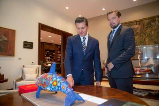 Mexico promised to protect the marine ecosystems of the Gulf of California and in particular the vaquita marina porpoise, in a p