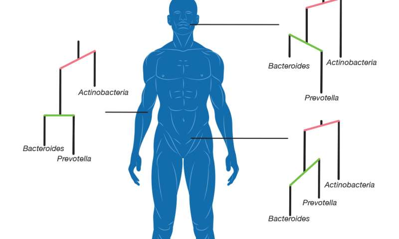 Microbes evolved to colonize different parts of the human body