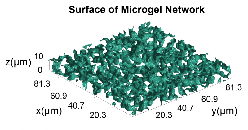 Microgel composite could overcome fibrin blockade to accelerate healing