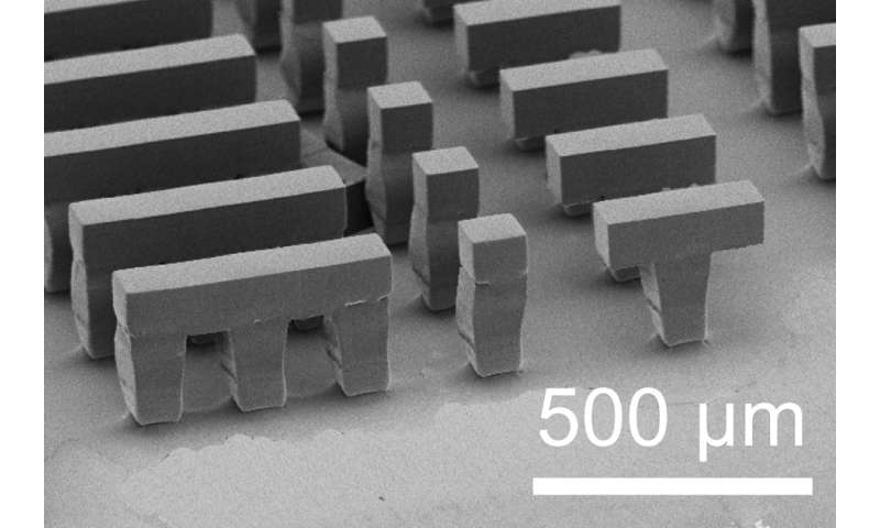 Microparticles created by new 3-D fabrication method could release drugs or vaccines long after injection