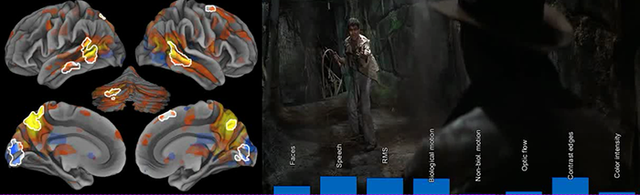 Movie research results—multitasking overloads the brain