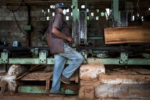 "Mozambique's wood processing industry has embraced the new government measures to fight illegal logging, ""as the processing"