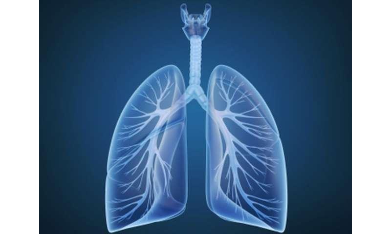 MRI measures can predict pulmonary arterial HTN outcome
