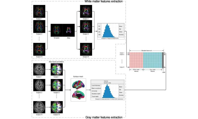 Brain Differences In Adhd >> Mri Shows Brain Differences Among Adhd Patients