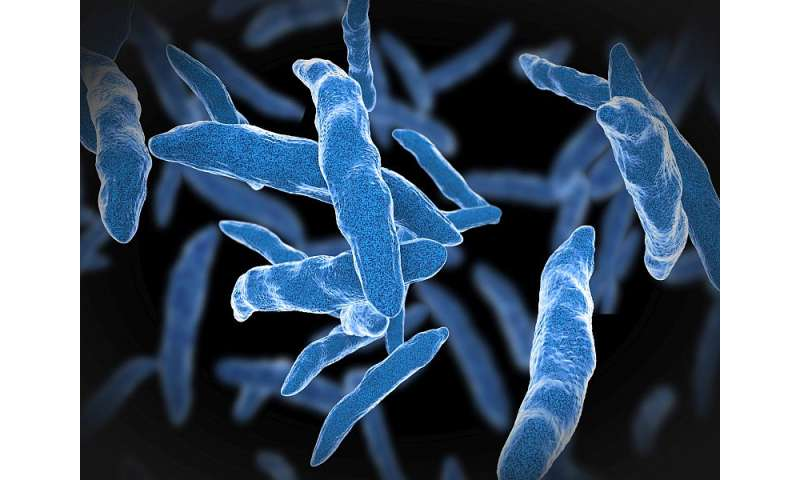 Multidrug-resistant TB set to increase through 2040