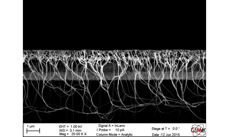 Nanotube film may resolve longevity problem of challenger solar cells