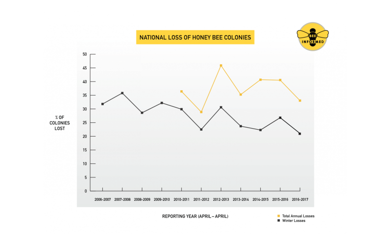Nation's beekeepers lost 33 percent of bees in 2016-17