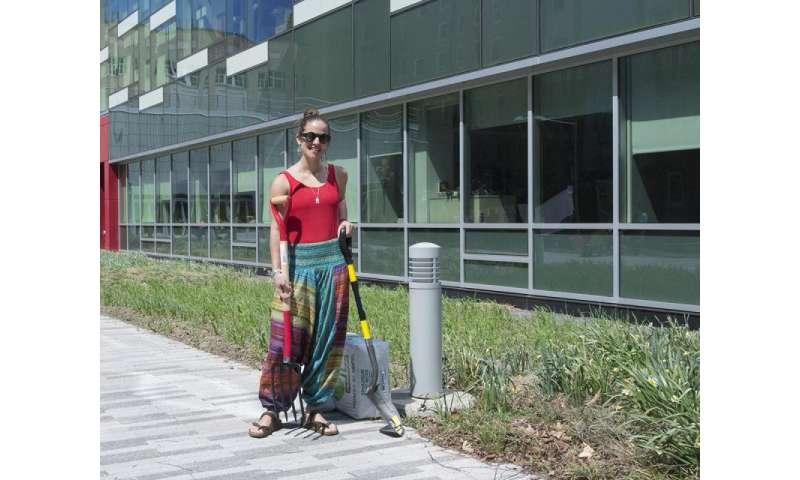 Natural dye garden promotes a greener fashion supply chain