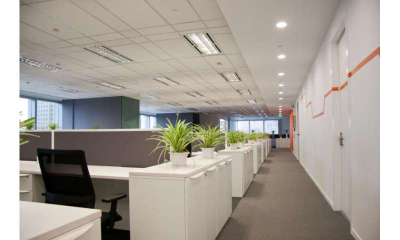 Nature in the workplace makes employees happier and healthier