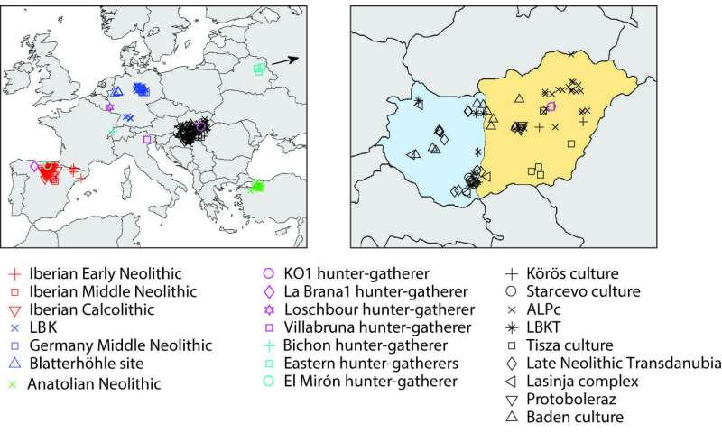 Neolithic farmers coexisted with hunter-gatherers for centuries in Europe