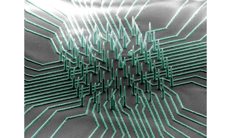 'Neuron-reading' nanowires could accelerate development of drugs for neurological diseases