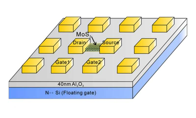 neuron transistor