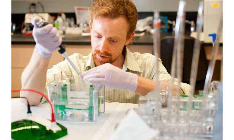 New assay leads to step toward gene therapy for deaf patients