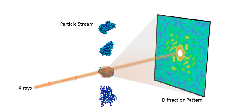 New Berkeley lab algorithms extract biological structure from limited data