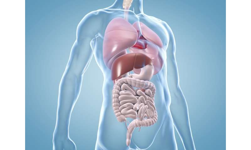 New biomarker allows better prediction of survival for patients with colorectal metastases