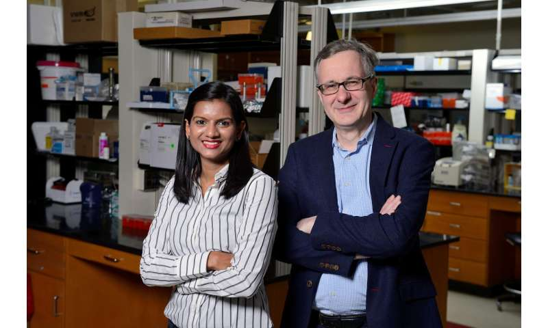 New cellular target may put the brakes on cancer's ability to spread