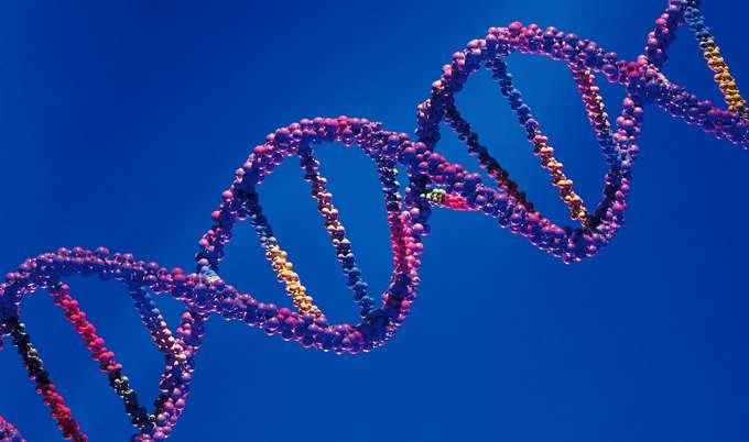 New digital method enhances understanding of changes in DNA's makeup
