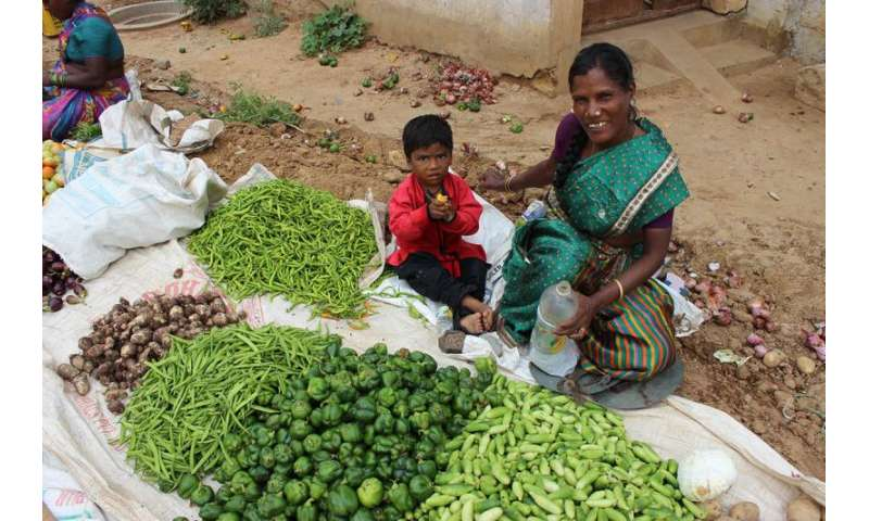 New food policies could take the bite out of India's malnutrition