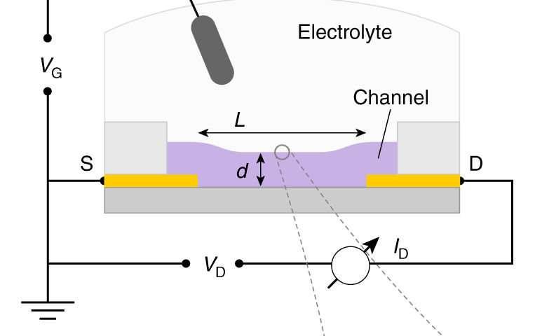 New method benchmarks organic mixed conductors
