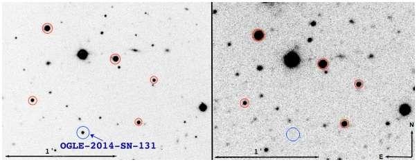 New slowly evolving Type Ibn supernova discovered