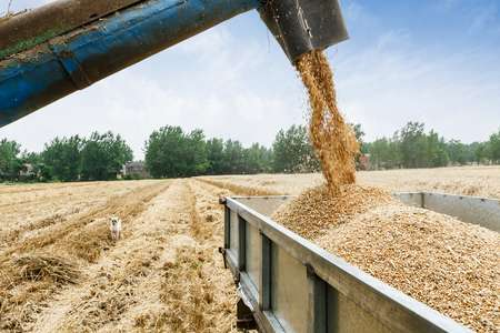 New tool designed to help food industry set climate change targets