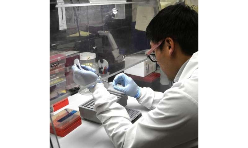 New wheat streak mosaic virus resistance genetic markers developed