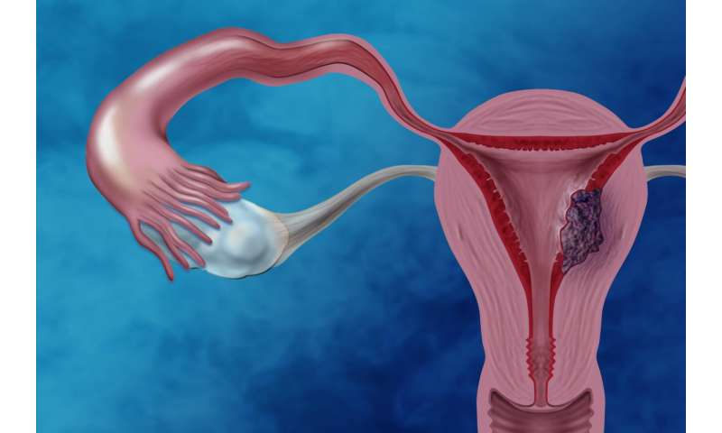 NHGRI researchers home in on mutation profiles of clear cell endometrial cancer