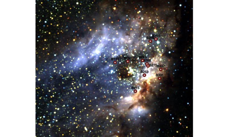 No close partner for young, massive stars in Omega Nebula