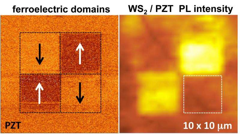 Novel monolayer ferroelectric hybrid structures