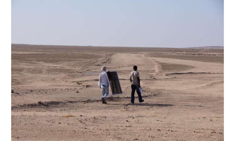 NSF-funded IUPUI study of non-rainfall water in Namib Desert reveals unexpected origins