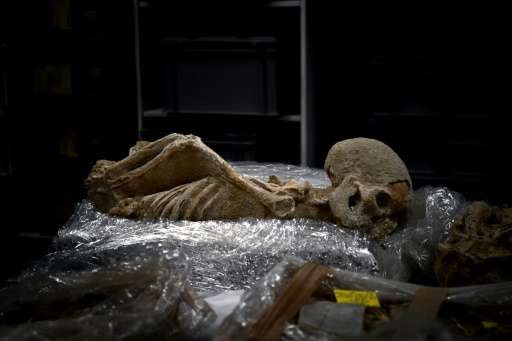 """One of the skeletons was found with his arms twisted behind his back and may have been a """"prisoner of war, a criminal or a"""