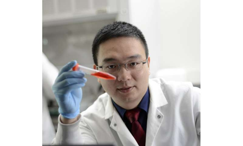 On target: UNC researcher arms platelets to deliver cancer immunotherapy