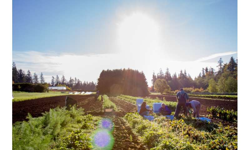 Organic is only one ingredient in recipe for sustainable food future