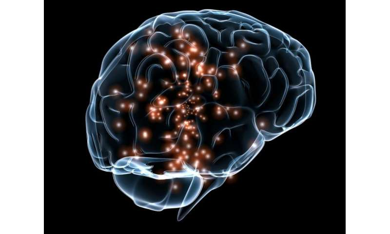 Our uniquely lopsided brain
