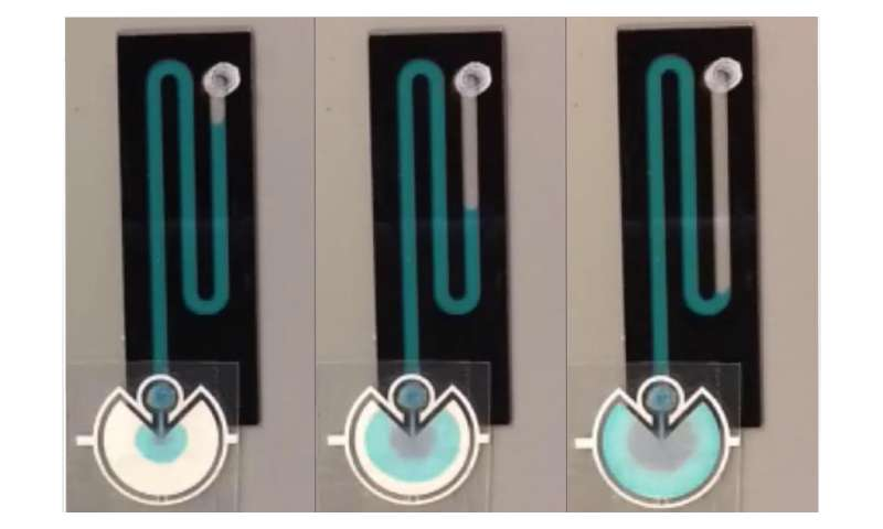 Paper pumps power portable microfluidics, biomedical devices