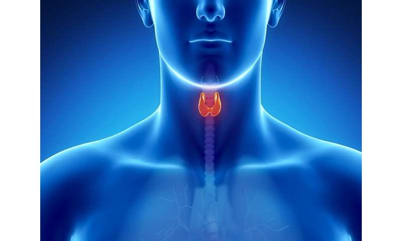 Parathyroid hormone linked to arterial stiffness in T1DM