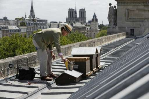Paris today boasts more than 700 beehives, according to 2015 figures, most located on rooftops such as those of the haute cuisin