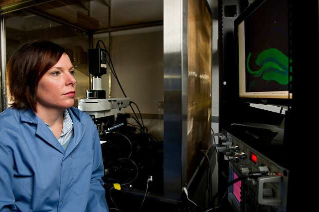 Paving the way for drug discovery