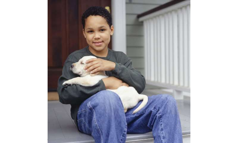Pet dogs help kids feel less stressed, study finds