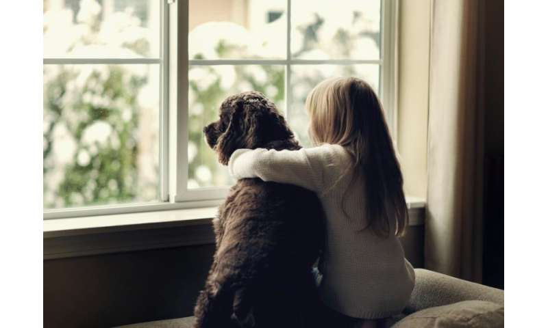 Pets can help children accept challenges of foster care
