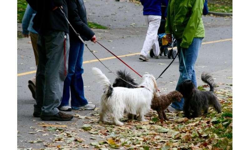 Pets strengthen neighbourhood ties