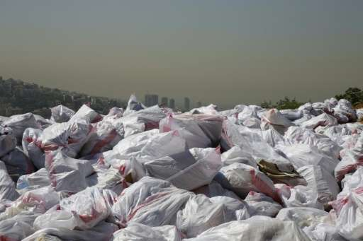Piles of garbage are pictured in a forest area overlooking the Lebanese town of Bsalim, northeast of the capital Beirut in 2016