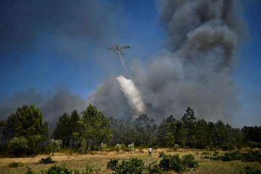 Portugal is set to break the record for destroyed forests in 2017, with recent disasters killing dozens of people