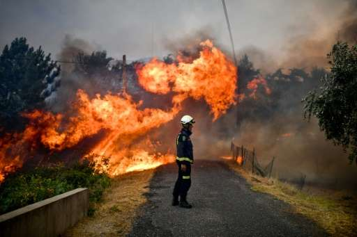 Portugal reported a sharp rise in the destruction wrought by forest fires so far this year compared with figures for the past de