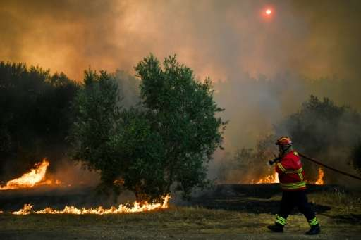 Portuguese firefighters have brought the biggest blaze, which broke out in a forest near the central town of Abrantes, largely u