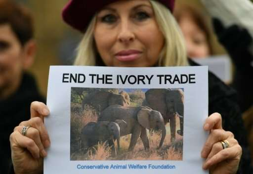 Protestors demonstrate in London against the ivory trade on February 6, 2017